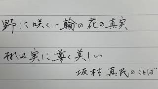 「野に咲く一輪の花の真実それは実に尊く美しい」美文字でペン字レッスン